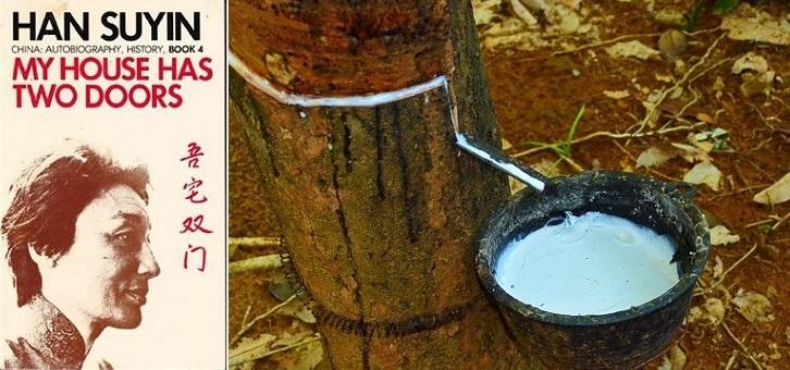 黄锦树/马华文学里的橡胶树——我们的情感记忆