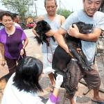林韋地/防疫與動物保護無法雙贏?
